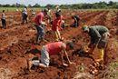 Child Labor in Cuba