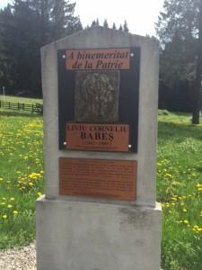 Liviu Babes memorial Poiana Brasov 5-21-15